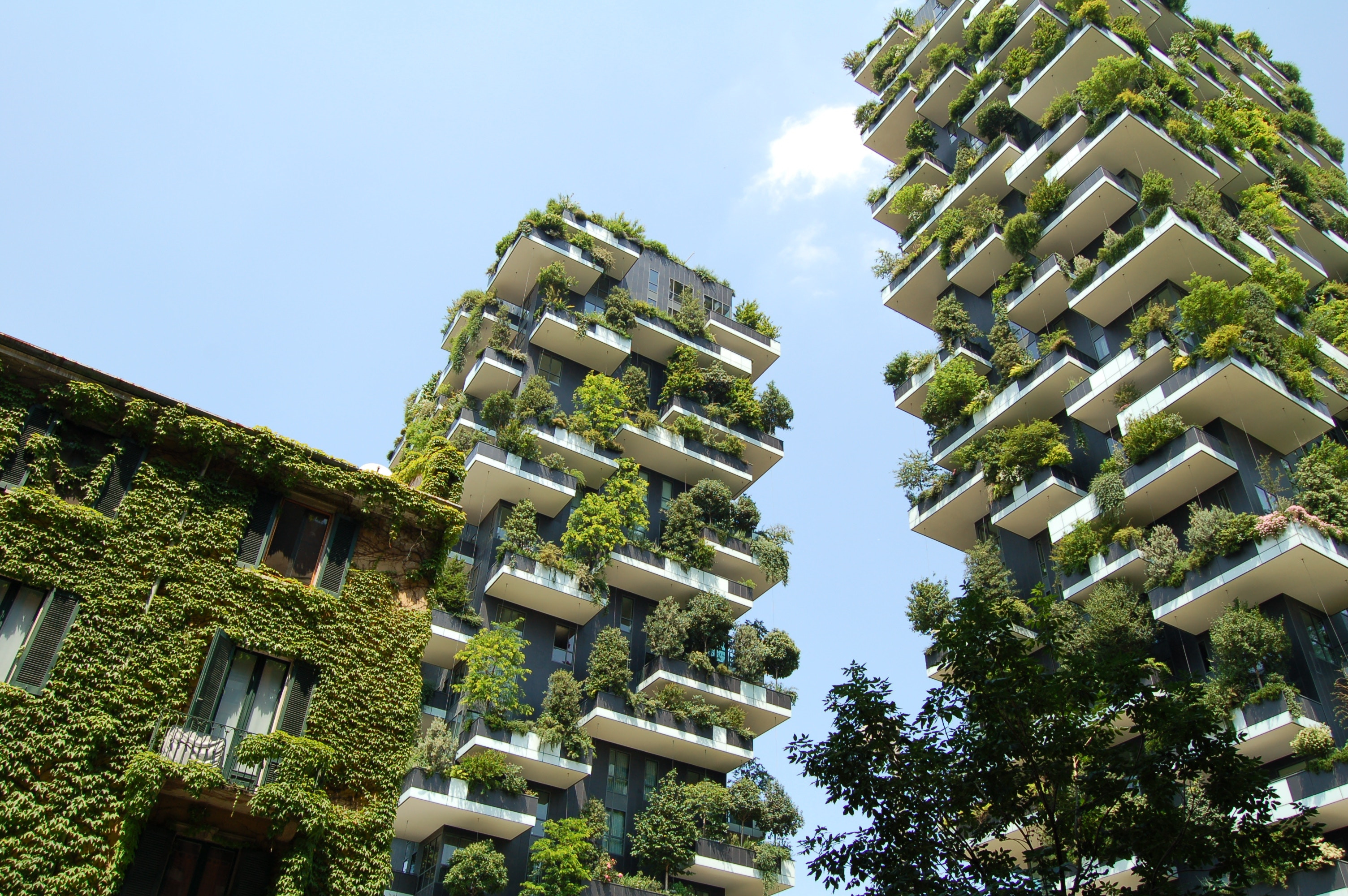 Building Green has great impact on the environment